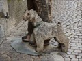 Image for Man with dog - Brixen, Trentino-Alto Adige, Italy