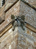 Image for Gargoyles - St Peter & St Paul - Preston, Rutland