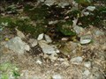 Image for Marble Springs, James River Face Wilderness, Appalachian Trail, VA