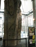 Image for Climbing Wall at REI, Portland, Oregon