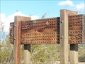 Image for Native Solitary Bee House, Tucson, AZ