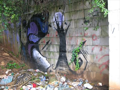 graffiti - woman and moon through tree branches