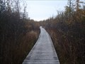 Image for Oivi's Trail Non-Coastal Boardwalk - Roblin, Ontario