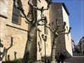 Image for Saint-Jean-de-Luz : une souscription pour rénover le petit orgue - France