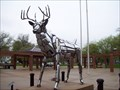 Image for White Tail Deer.  Springfield, Illinois.