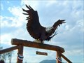 Image for GONE: Mule Shoe Eagle - West Glacier, Montana