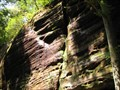 Image for Dismals Canyon - Phil Campbell, Alabama