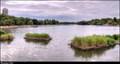Image for Serpentine lake - London, UK