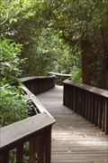 Image for Gumbo Limbo Boardwalk.