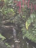 Image for Botanical Garden Munich