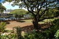 Image for McInerny Dog Park - Honolulu, HI