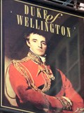 Image for Duke of Wellington - Pub Sign - Cardiff,  South Wales.
