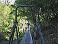 Image for Waiwhakaiho River bridge, Egmont National Park, New Zealand