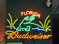 Image for Beef O'Brady's Neon - Fruit Cove, Florida