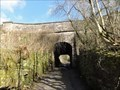Image for Hollinwood Branch Canal Aqueduct Over Crime Lane, Waterhouses, UK