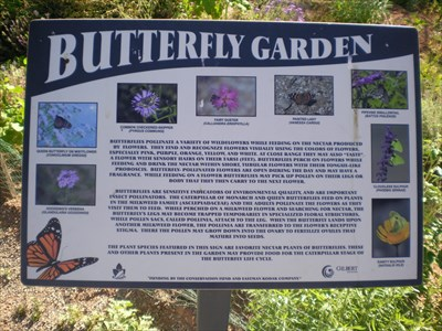Riparian Preserve Butterfly Garden   Gilbert, AZ   Butterfly Gardens On  Waymarking.com