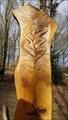Image for Oak Leaves - Memorial Wood - Bradgate Park, Leicestershire