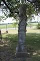 Image for Lawrence W. Tucker - Cedar Grove Cemetery - Kaufman County, TX