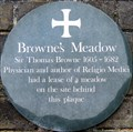 Image for Browne's Meadow - The Close, Norwich, UK