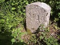 Image for B/MA Boundary Stone, Near Liddaton, West Devon.