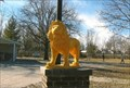 Image for Yellow Lions - Jonesburg, MO