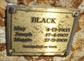 Image for Black Family - Cartmetricup, Western Australia