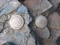 Image for Low Tide Mark HS-40069
