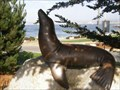 Image for San Carlos Beach sea lion statue - Monterey, California