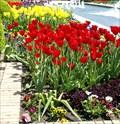 Image for Kauffman Memorial Garden