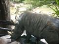 Image for Bronzes for the Blind: White Rhinoceros - Tucson, Arizona