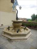 Image for Fontanina Battesimale della Contrada Capitana dell'Onda - Siena, Italia
