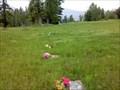 Image for Pass Creek (Lugovoye) Doukhobor Cemetery - Pass Creek, British Columbia