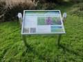 Image for Walking Through Wigg Island - Runcorn, UK