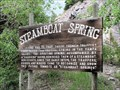 Image for Steamboat Spring - Steamboat Springs, CO