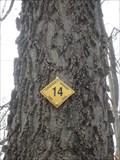 Image for Carantouan Tree Trail - Waverly, NY