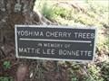 Image for Mattie Lee Bonnette - Ridge Spring SC