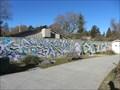 Image for Laguna Skate Park graffiti - Sebastopol, CA