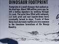 Image for Dinosaur Footprint Navajo National Monument -  Shonto AZ
