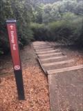 Image for Ecology Trail, The Presidio - San Francisco, California