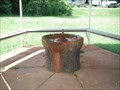 Image for Beech Bluff Artesian Well