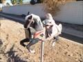 Image for Santa Mailbox - Avondale Arizona