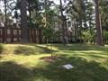 Image for Robert Ryland Musick Tree - Richmond, VA