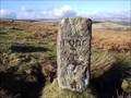 Image for PUDC Boundary Stone, Holne Moor, Dartmoor.