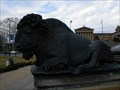 Image for Bison @ the George Washington Monument - Philadelphia, PA