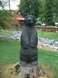 Image for Black Bear - Maize Adventures - High Point, NC