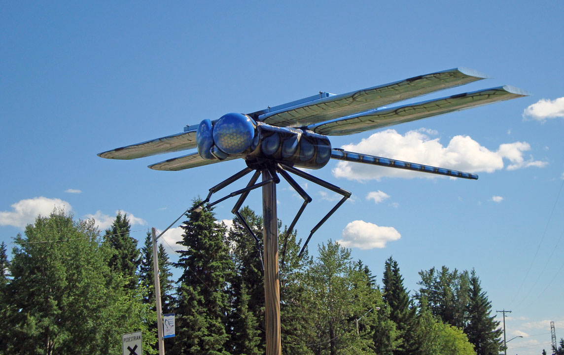 World's Largest Dragonfly in Wabamun Image