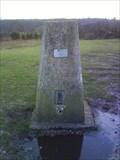 Image for Lyndhurst