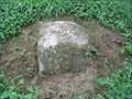 Image for MASDIX West Line Stone 133, 1767, Pennsylvania-Maryland