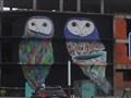 Image for Graffiti de Corujas em Coruche - [Coruche, Santarém, Portugal]