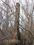 Image for Hojack Chimney